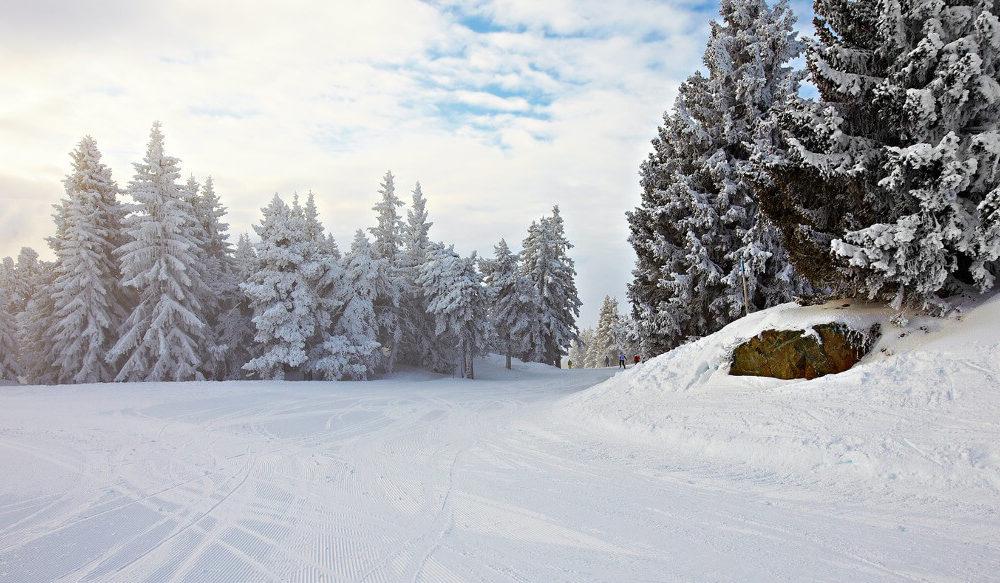 Ski fahren Alpen